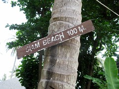(sensesmaybenumbed) Tags: tree sign thailand honeymoon palm phuket rachayaiisland kohrachayai siambeach