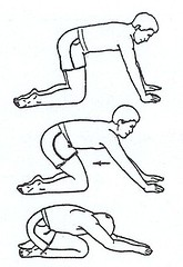 low back exercises  osteopathic pain relief centre