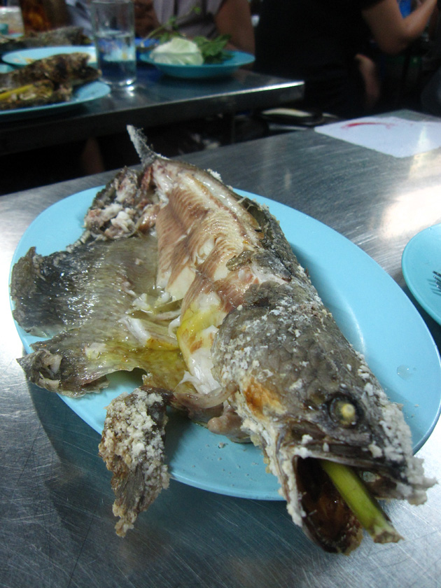 grilled fish (pla pao, ปลาเผา)