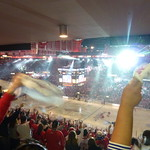 Let's go Red Wings! thumbnail