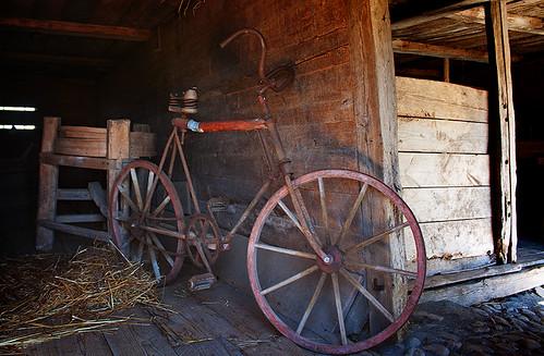 Cykel (128 av 365 )