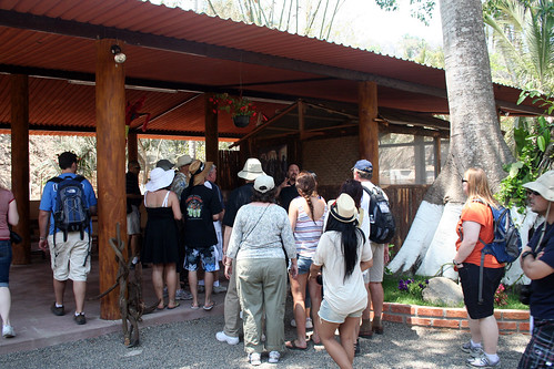 Puerto Vallarta - City and Tropical Jungle Escape Tour - And This Went On for 45 Minutes