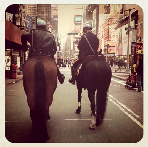 NYC. Horses. by Making Deals Zine