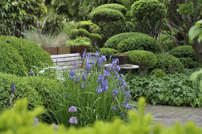 Ulla Molins trädgård
