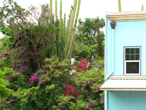 a brightly colored landscape