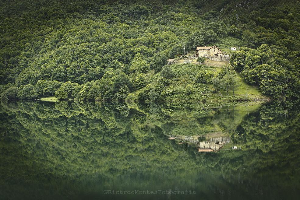 La casa, el bosque, el agua...