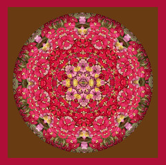 courage (SueO'Kieffe) Tags: nature digital photoshop mandala spirituality