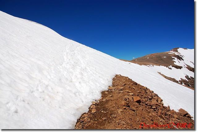 Cameron東坡大雪原