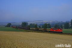 155 028-4, 23.07.2008, Haunetal (mienkfotikjofotik) Tags: train eisenbahn rail railway db deutschebahn bahn freight güterzug vlak kolej koleje tehervonat vasút br155 energiecontainer vlaky vasutak