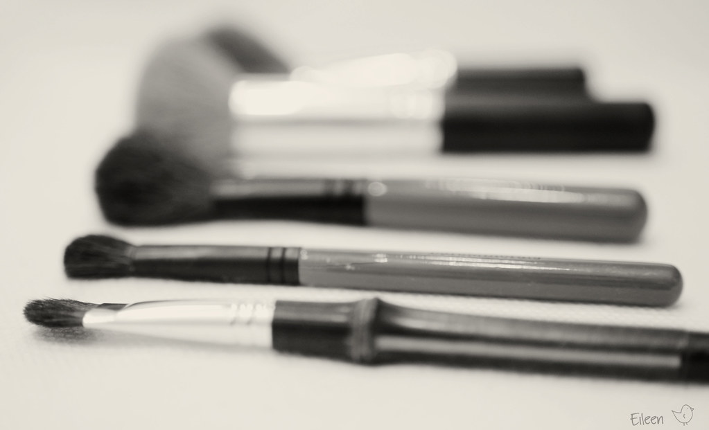 Brushes in black and white