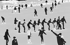 Tutti in fila (magellano) Tags: pattinaggio skating persone people candid ungheria hunghery budapest fila string ghiaccio ice row