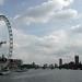 London Eye River View