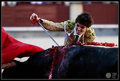 patrick-oliver-3 (Manon71) Tags: madrid bulls toros bullfight toreros lasventas