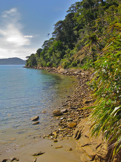 Ship Cove, Marlborough Sounds, New Zealand
