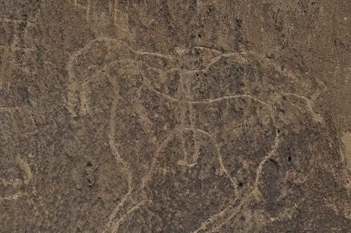 Qobustan petroglyph