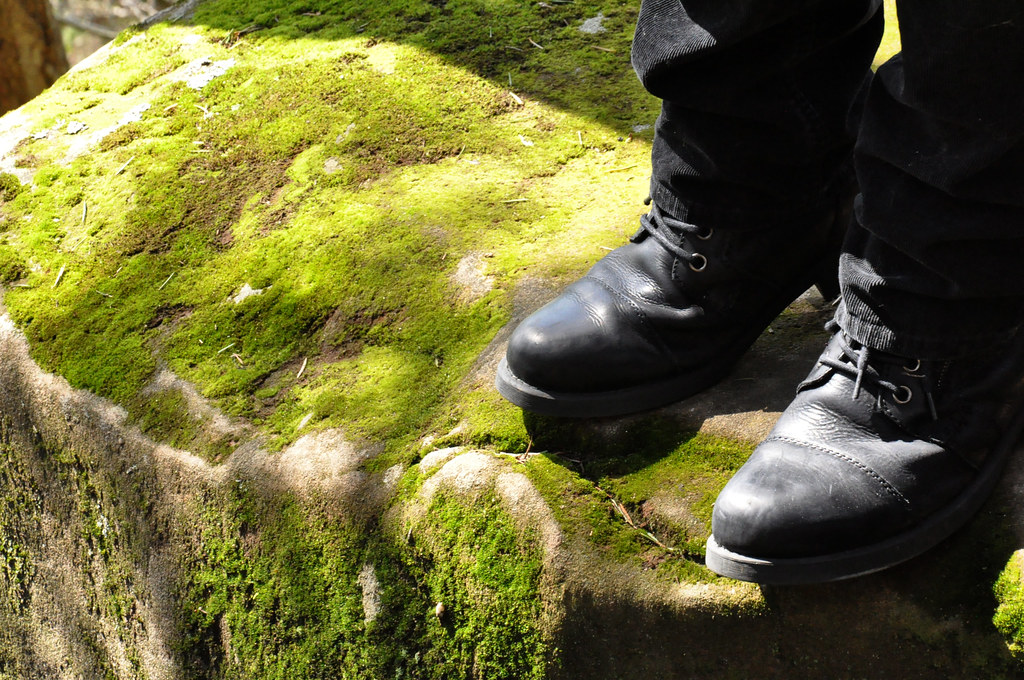 moss and boots