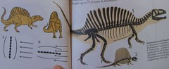 A Field Guide to Dinosaurs, 1983, Page 84 and 85