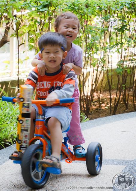 MuiMui's Little Cousins