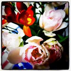 久しぶりに、お花を買ってきました。チューリップとフリージア