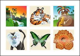 free Jungle King slot game symbols