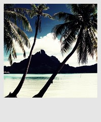 Tahiti Sensations (Vancayzeele Olivier) Tags: light sea mer water colors square photo eau photographie lumire tahiti paysage couleur camerabag palmier borabora carr le frenchpolynesia lagon polynsie polynsiefranaise vancayzeele mygearandme