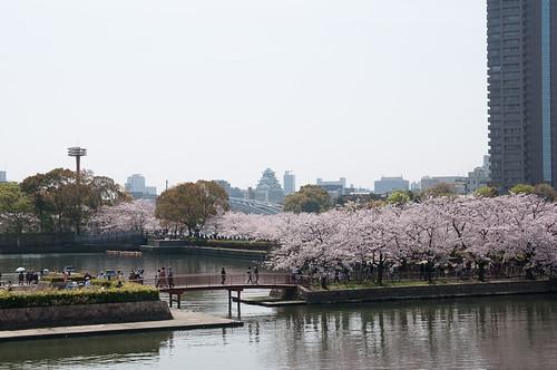 毛馬桜宮公園1