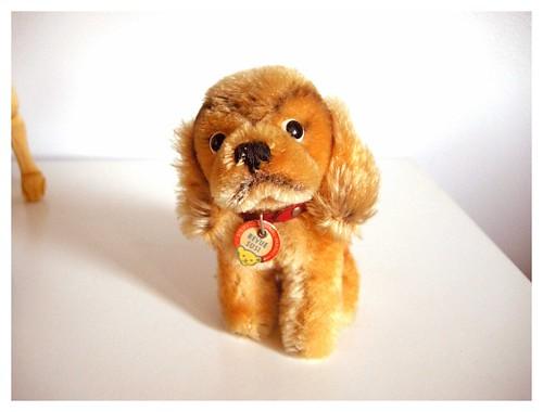 Pup Steiff