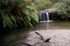 Rainbow Downs (edwinemmerick) Tags: longexposure green 20d water pool creek canon downs eos waterfall rainbow pond bush sand stream australia nsw ferns edwin woodford emmerick edwinemmerick rainbowdowns