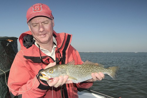 Grassett with a seatrout
