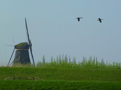 Kinderdijk (Frans.Sellies) Tags: holland heritage mill netherlands windmill dutch landscape nederland thenetherlands unescoworldheritagesite unesco worldheritagesite dyke dijk paysbas unescoworldheritage kinderdijk molen olanda hulanda worldheritage niederlande  weltkulturerbe whs dutchlandscape mondial patrimoine windmolen patrimonio hollandia worldheritagelist  welterbe  holandia hollanda pasesbajos unescowhs pasesbaixos ph545  patrimoinemondial werelderfgoed  vrldsarv alankomaat   werelderfgoedlijst verdensarven  patriomoniodelahumanidad nizozemsko   nyderlandai      p1300168 nderlande