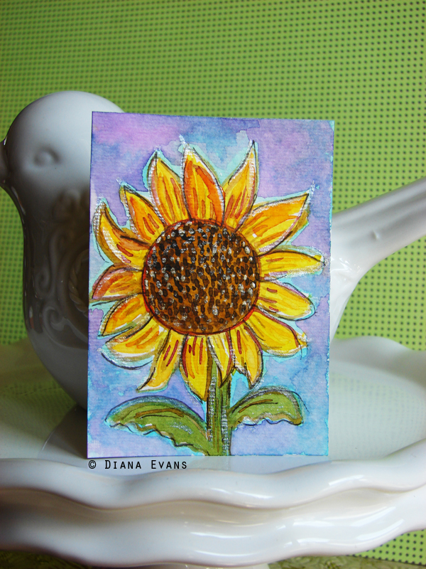 sunflower 1b