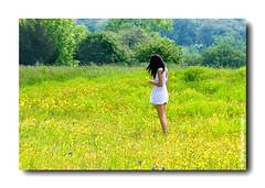 Tìm Nhau Trong Hoa Nở, Tìm Nhau Trong Cơn Gió....* (HoangHuyManh images) Tags: flowers bluebonnets portrail mygearandme hoanghuymanhimages showroomsbest showroomsredcarpetclub qualifiedmemberonlylevel2 highqualityimages6awards