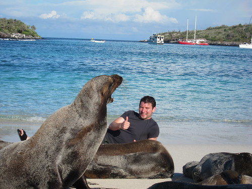 me laying down with sealions
