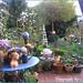 Spring garden love