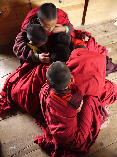 Young monks huddled in prayer?..