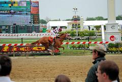 "2010-05-13 (31) r5 Eric Comacho on #7 On the Air (JLeeFleenor) Tags: horseracing thoroughbredracing photo photography photos pimlico marylandracing marylandhorseracing jockey جُوكِي ""赛马骑师"" jinete ""競馬騎手"" dżokej jocheu คนขี่ม้าแข่ง jóquei žokej kilparatsastaja rennreiter fantino ""경마 기수"" жокей jokey người horses thoroughbreds equine equestrian cheval cavalo cavallo cavall caballo pferd paard perd hevonen hest hestur cal kon konj beygir capall ceffyl cuddy yarraman faras alogo soos kuda uma pfeerd koin حصان кон 马 häst άλογο סוס घोड़ा 馬 koń лошадь winner maryland"