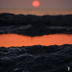- sunset - (Franz-Renan Joly) Tags: sunset sea sky sun mer france beach water night de landscape soleil brittany eau day view coucher wave bretagne jour ciel paysage vague nuit plage vue breton atlantique ocan burnsky