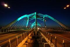 Enneüs Heermabrug (E-wout) Tags: bridge amsterdam architecture brug architectuur ijburg nicholasgrimshaw vinex enneüsheermabrug