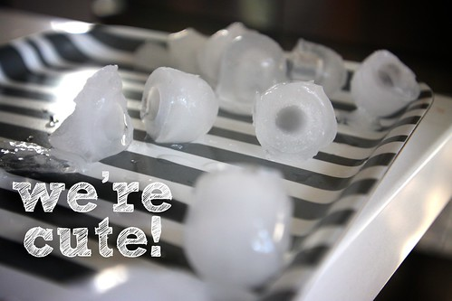 i never thought ice cubes could be cute