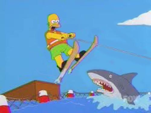 Jump The Shark 2