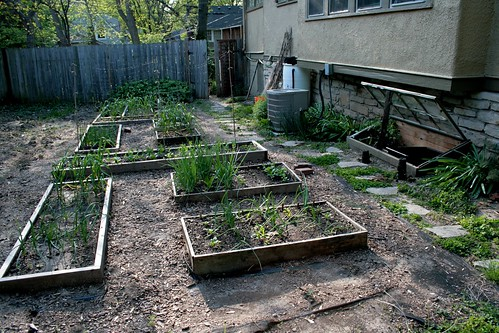 Vegetable Garden, East Side