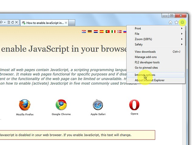 Activar El Javascript Internet Explorer 9