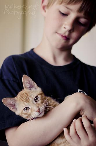 177:365凯蒂猫