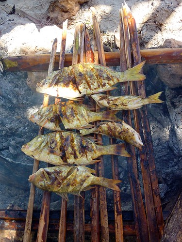 Barbequed fish for lunch