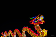 China Lights Vb, The Full Dragon (In Wonder Photo) Tags: chinese lanterns silk led boernerbotanicalgarden milwaukee wisconsin hdr night multicolored outdoors nikon d750 markadsit
