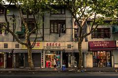 hair wash between the trees (Rob-Shanghai) Tags: hair wash shanghai china street streetphotography leica leicaq women trees colour