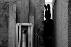 (1) (bellimarco) Tags: shadow bn ombre marco belli stazione bianco nero lapin linea coniglio inedito nascosto cuniculum