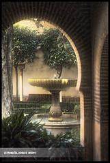La Alhambra (Crisologo) Tags: tree fountain stone arbol arc fuente alhambra granada arabe arco piedra