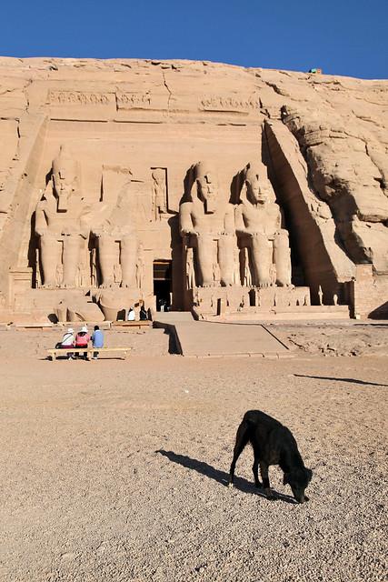 エジプト、アブシンベル大神殿と犬