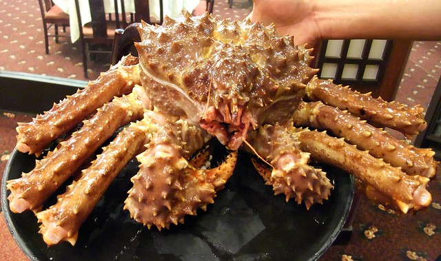 8 lb Live Alaskan King Crab